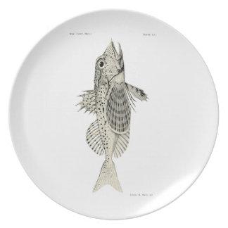 Vintage Science NZ Fish - Spotted Gurnard Melamine Plate