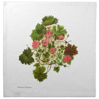 Vintage Science NZ Flowers - Geranium traversii Napkin