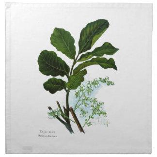 Vintage Science NZ Flowers - Kohe Kohe Napkin