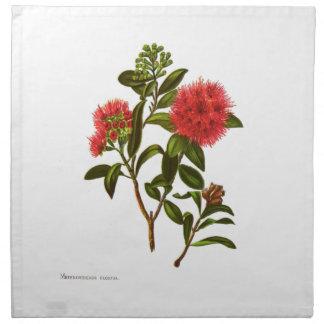 Vintage Science NZ Flowers - Meterosideros florida Napkin