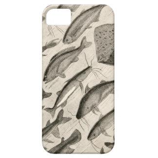Vintage Scientific Fish Swimming Amazon River Fins iPhone SE/5/5s Case