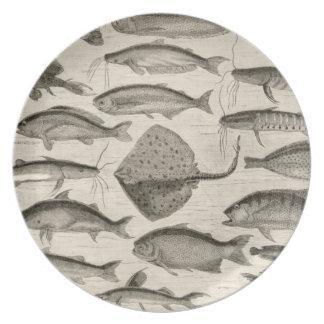 Vintage Scientific Fish Swimming Amazon River Fins Party Plate