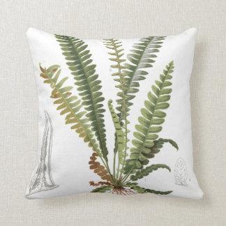 Vintage Scientific Plant Fern Illustration Throw Pillow