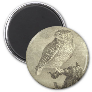 Vintage Screech Owl 2 Inch Round Magnet