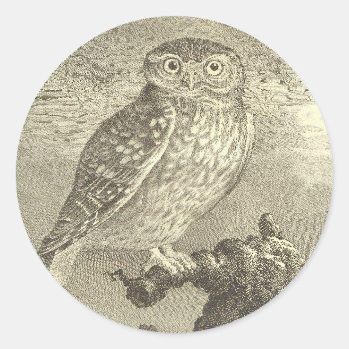 Vintage Screech Owl Classic Round Sticker