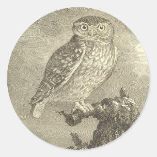 Vintage Screech Owl Round Sticker
