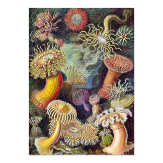 Vintage Sea Anemones by Ernst Haeckel Invitations