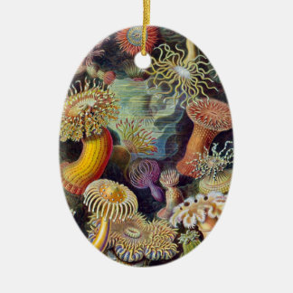 Vintage Sea Anemones by Ernst Haeckel Christmas Ornament