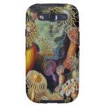 Vintage Sea Anemones, Ernst Haeckel Samsung Case Galaxy SIII Covers