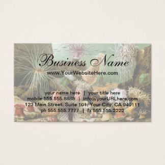 Vintage Sea Anemones, Marine Life Animals Business Card