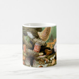 Vintage Sea Anemones, Marine Life Animals Coffee Mug