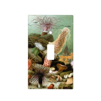 Vintage Sea Anemones, Marine Life Animals Light Switch Cover