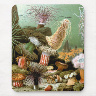 Vintage Sea Anemones, Marine Life Animals Mouse Pad