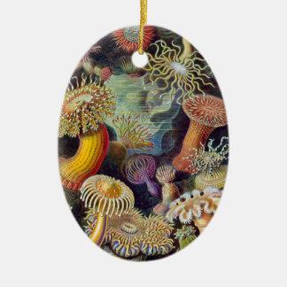 Vintage sea anemones scientific illustration ceramic ornament