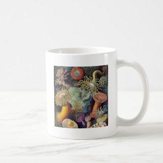 Vintage sea anemones scientific illustration coffee mug