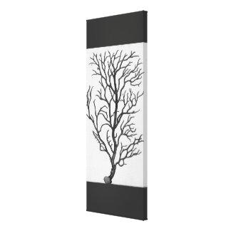 Vintage Sea Coral Drawing Art Canvas Black White