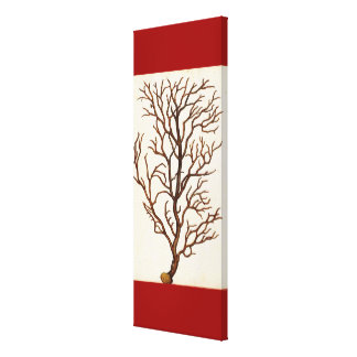 Vintage Sea Coral Drawing Art on Canvas Red