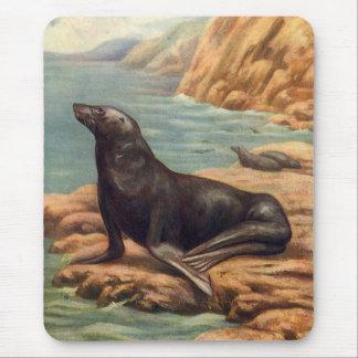 Vintage Sea Lion by the Seashore, Marine Mammal Mouse Pad