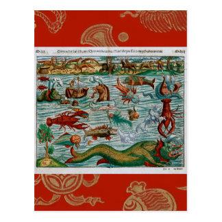 Vintage Sea Monsters Postcard