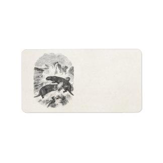 Vintage Sea Otters 1800s Otter Illustration Label