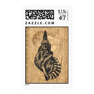 Vintage Sea Shell Postage Stamp