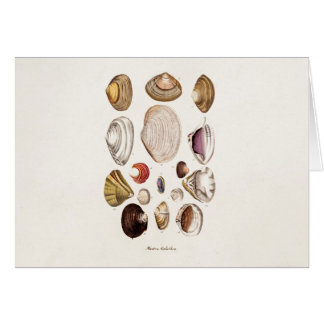 Vintage Sea Shells Personalized Retro Clam Shell Card