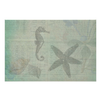 Vintage Sea Shells, Starfish, and SeaHorse Poster