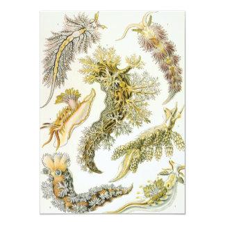 Vintage Sea Slugs by Ernst Haeckel Invitations