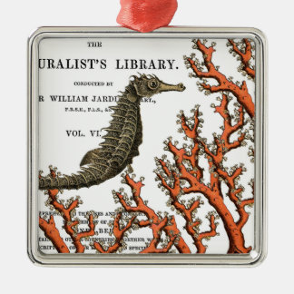 Vintage Seahorse and Coral Botanical Illustration Metal Ornament