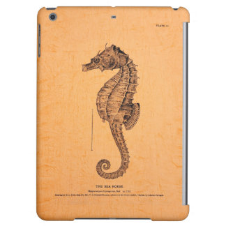 Vintage Seahorse Illustration iPad Air Cases