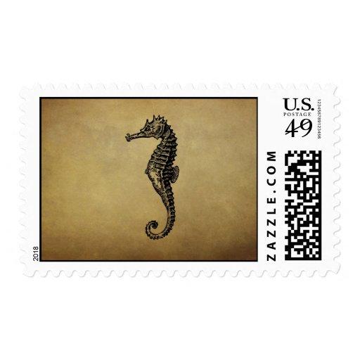 Vintage Seahorse Illustration Postage Stamps