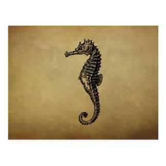 Vintage Seahorse Illustration Postcard