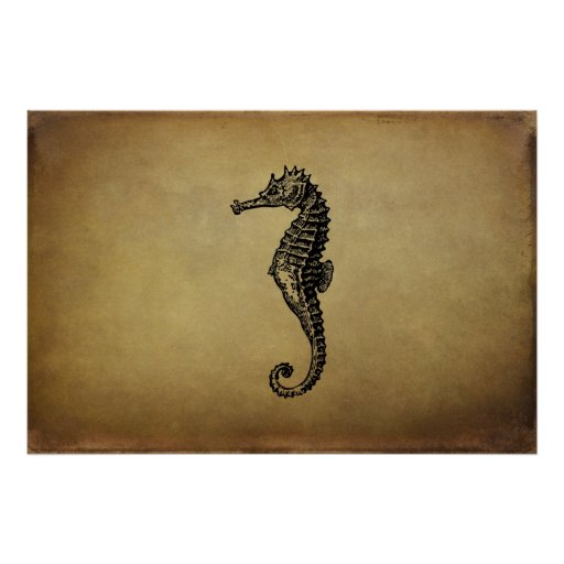 Vintage Seahorse Illustration Poster