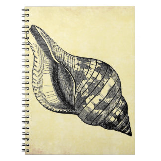 Vintage Seashell on Cream Spiral Notebook