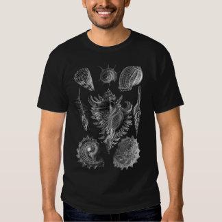 Vintage Seashells Black T Shirts