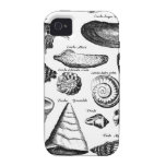 Vintage Seashells Case For The iPhone 4