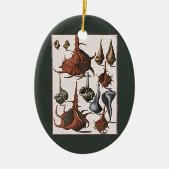 Vintage Seashells, Marine Ocean Animals Sea Shells Ceramic Ornament