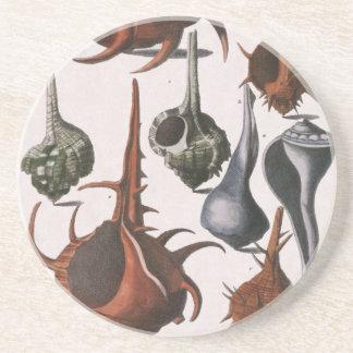 Vintage Seashells, Marine Ocean Animals Sea Shells Coaster