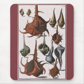 Vintage Seashells, Marine Ocean Animals Sea Shells Mouse Pad