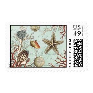 Vintage Seashells...postage stamp