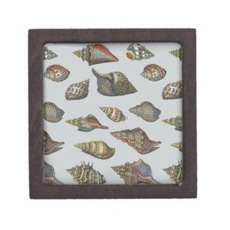 Vintage Seashells Premium Jewelry Box