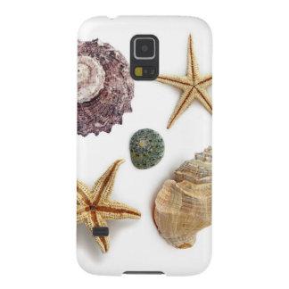 Vintage seashells shabby chic beach decor cases for galaxy s5