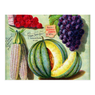 Vintage Seed Catalog Iowa Seed Co Cover Art Postcard