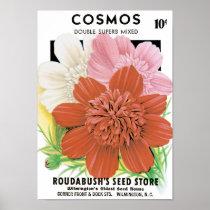 Vintage Seed Packet Art, Cosmos Garden Flowers