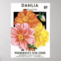 Vintage Seed Packet Art, Dahlia Garden Flowers