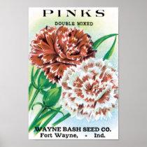 Vintage Seed Packet Art, Pinks Carnation Flowers