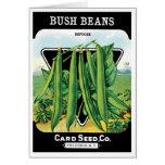 Vintage Seed Packet Label Art, Bush Bean Veggies