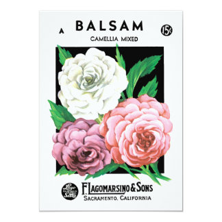 Vintage Seed Packet Label Art, Camellia Flowers Card