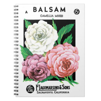 Vintage Seed Packet Label Art, Camellia Flowers Spiral Notebook