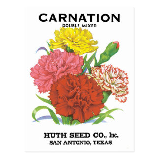 Vintage Seed Packet Label Art, Carnation Flowers Postcard